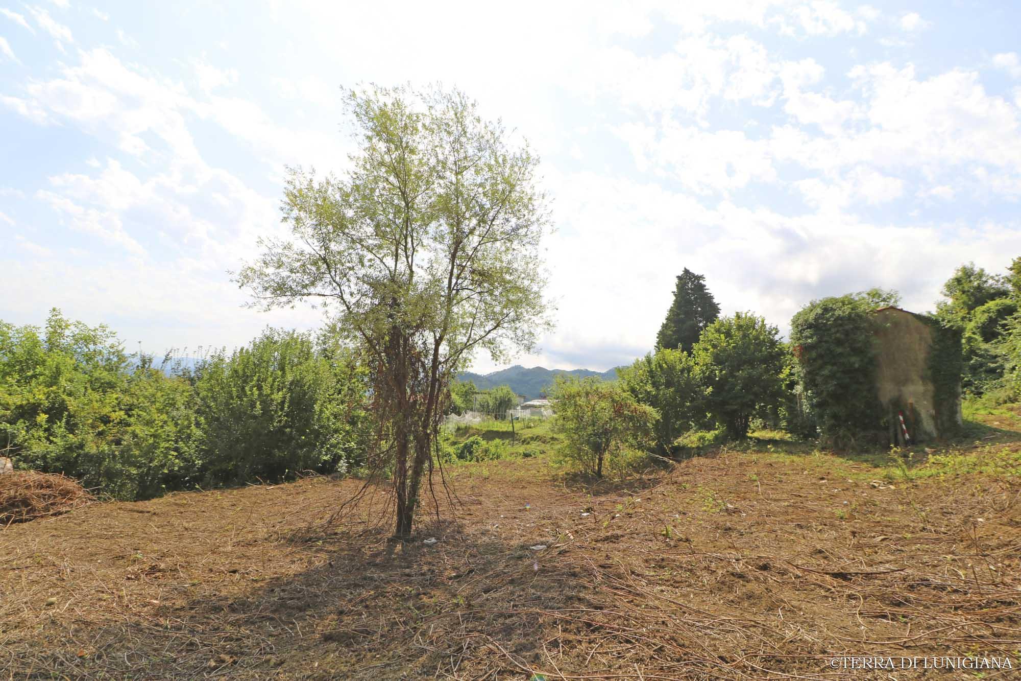 IL MARINO – Panoramic Farm with Stone House